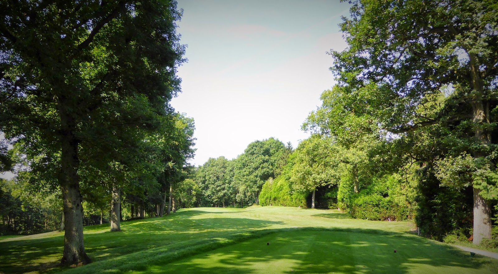 Golf Isabella