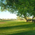 Fallon Golf Course