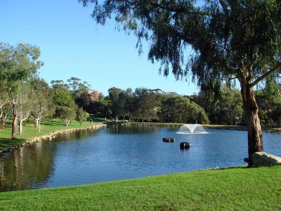 Cammeray Golf Club, golf in Australia