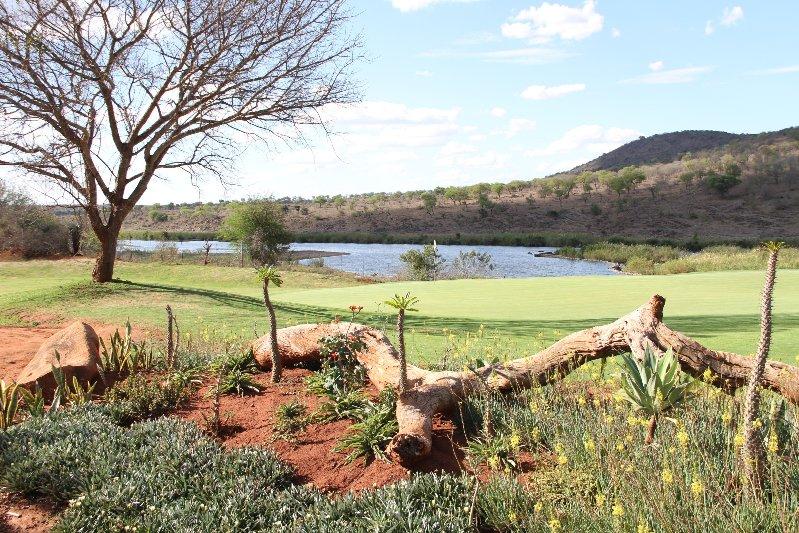 Kambaku Golf Club, golf in South Africa