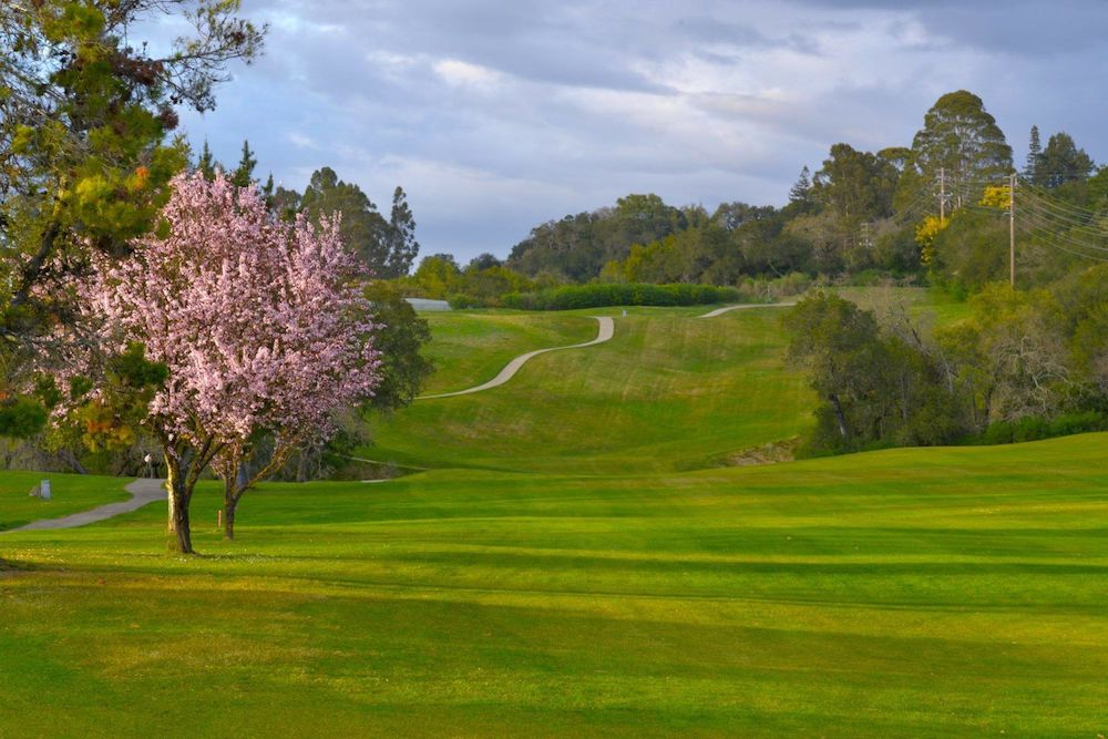 Ukiah valley Golf Course, california golf