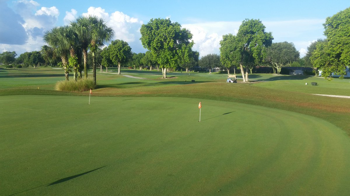 Hibiscus Golf Club, Naples golf