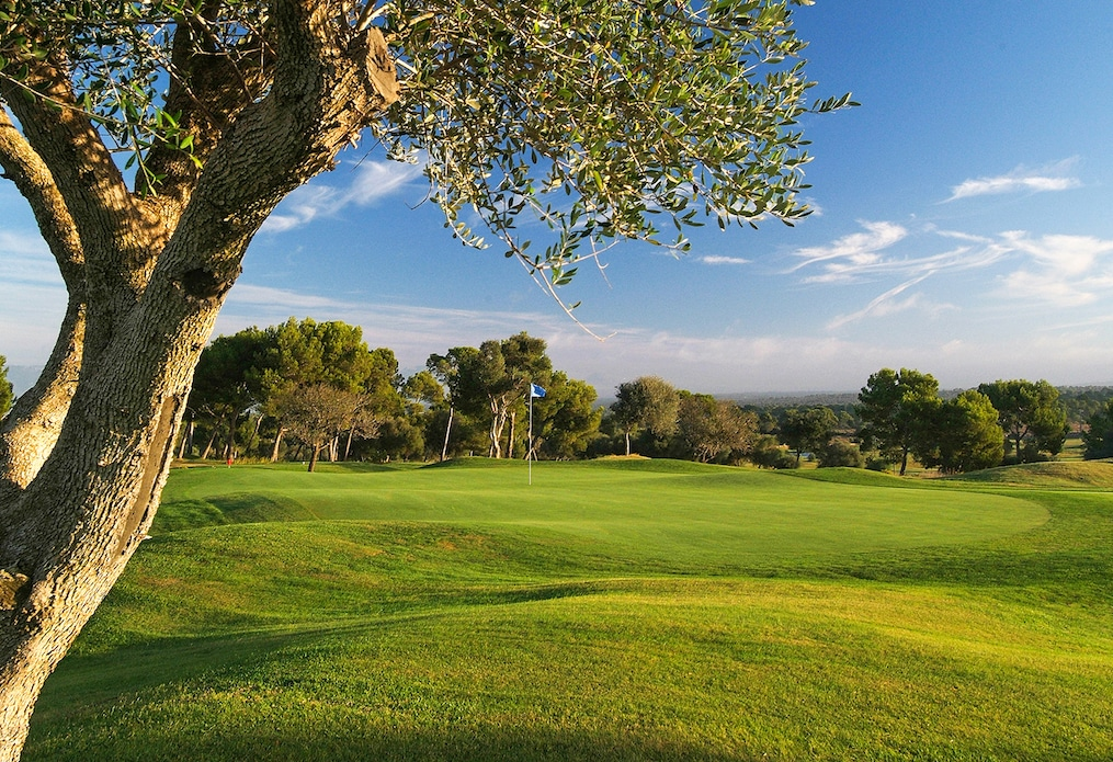 Golf Maioris, golf in Spain