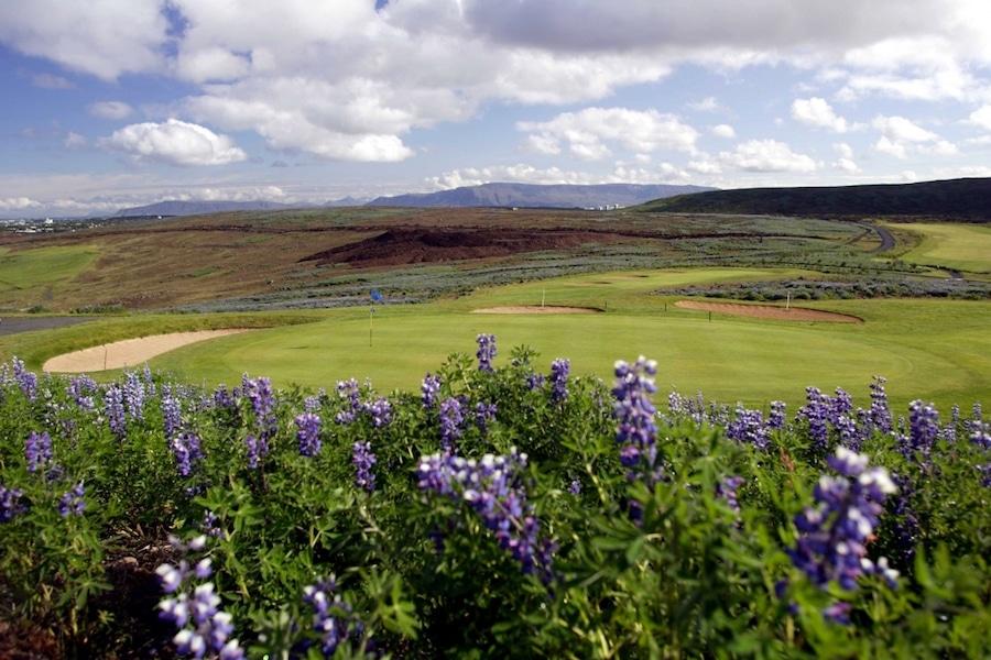 Oddur Golf club, golf in iceland