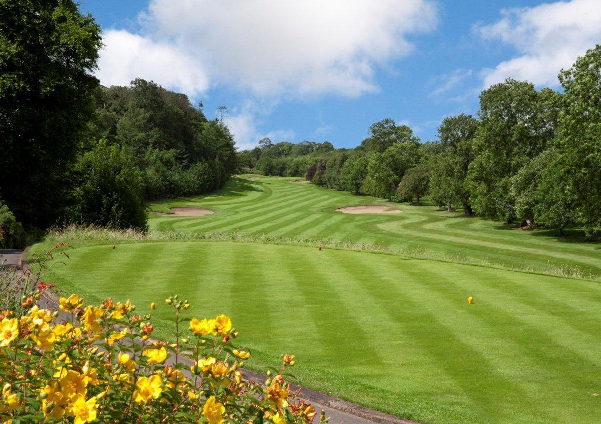 Naas Golf Club - golf in Ireland