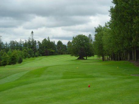 Naas Golf Club