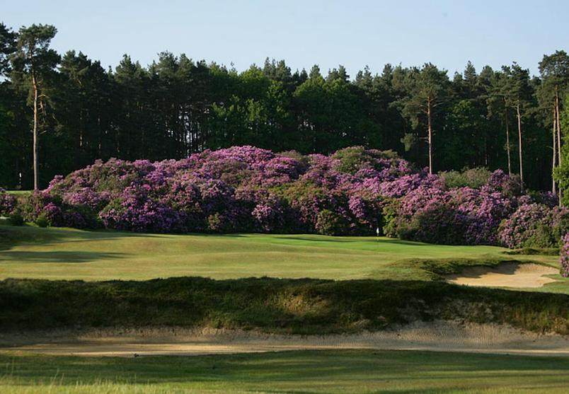 Swinley Forest Golf Club, Berkshire golf in england