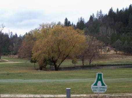 Adams Springs Golf Course