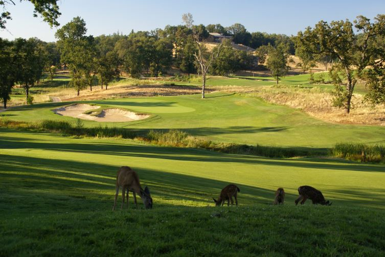 Darkhorse Golf Club, golf in california