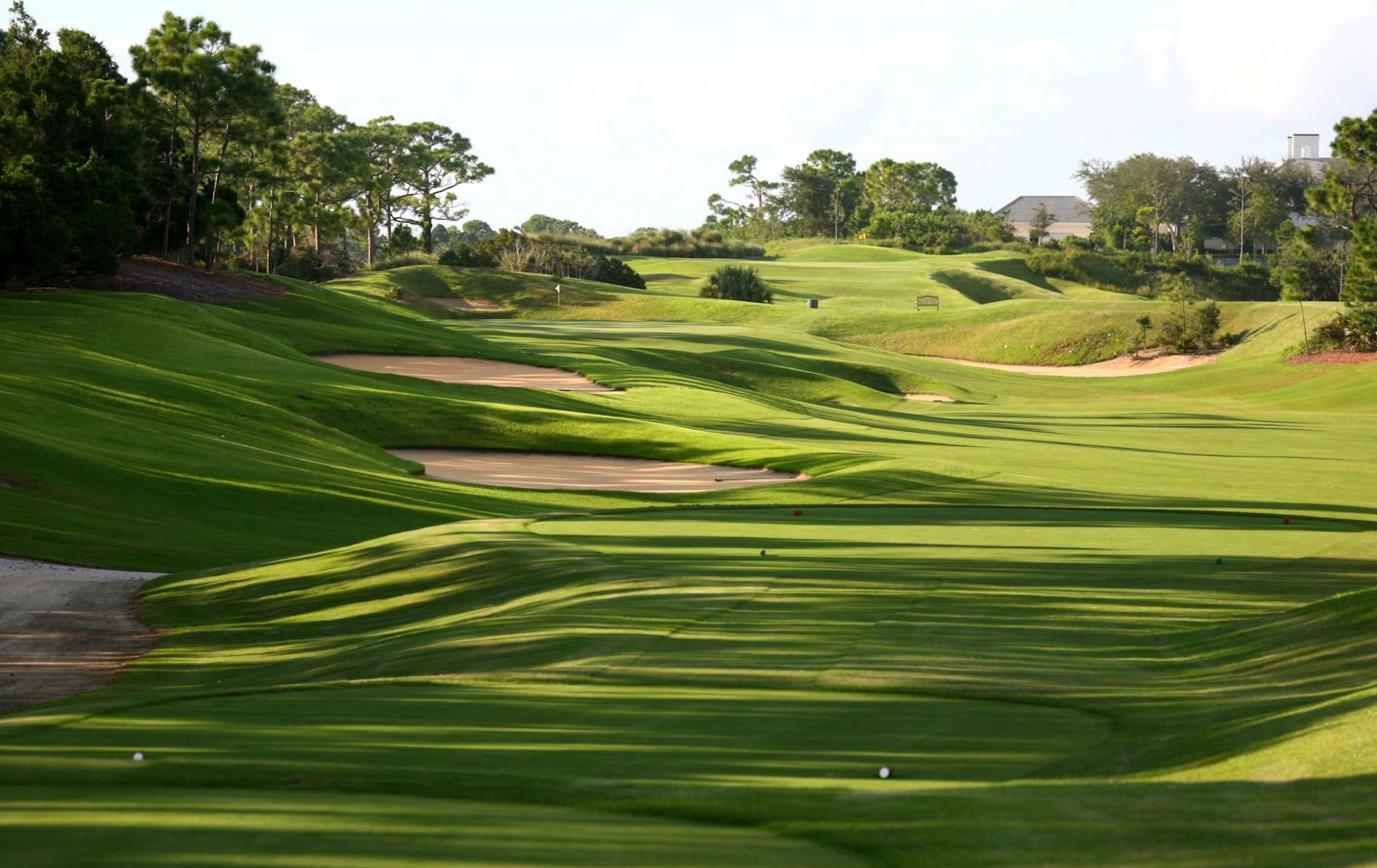 Loblolly Golf Course - Loblolly Pines