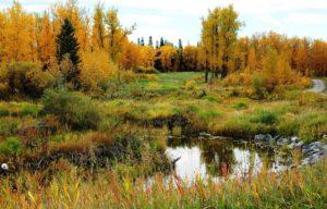 River Spirit Golf Club
